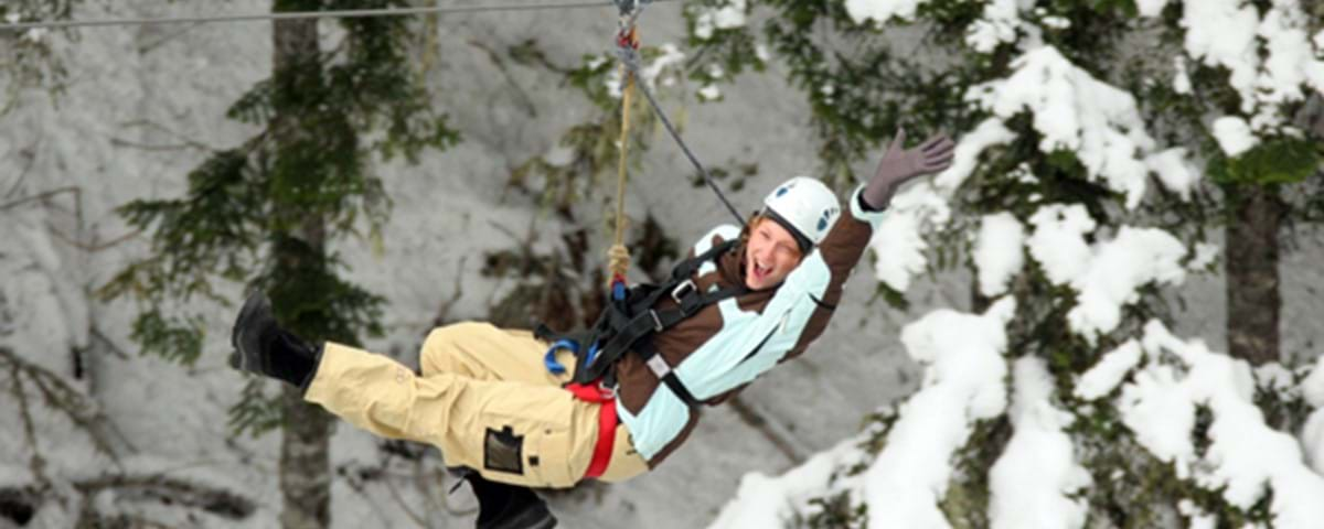 zipline-are-vinter